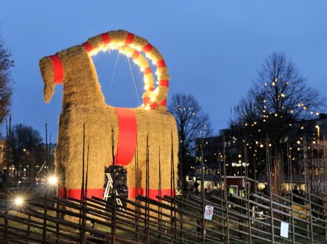 The Gävle Goat in Sweden, guarded by fences, security cameras, etc.